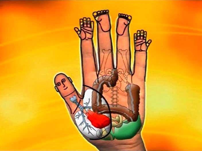 29 күнге арналған «ҚАН ТАЗАРТУ» дұғасы