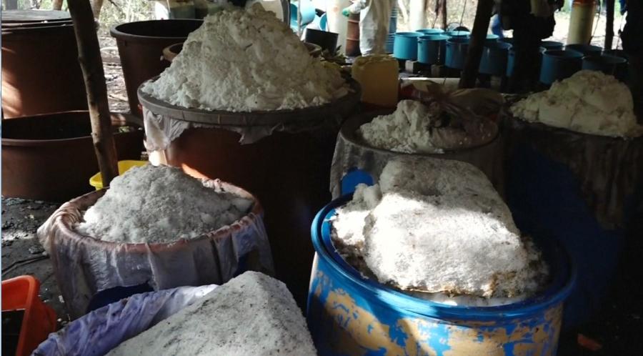 50 тонна есірткі тәркіленді