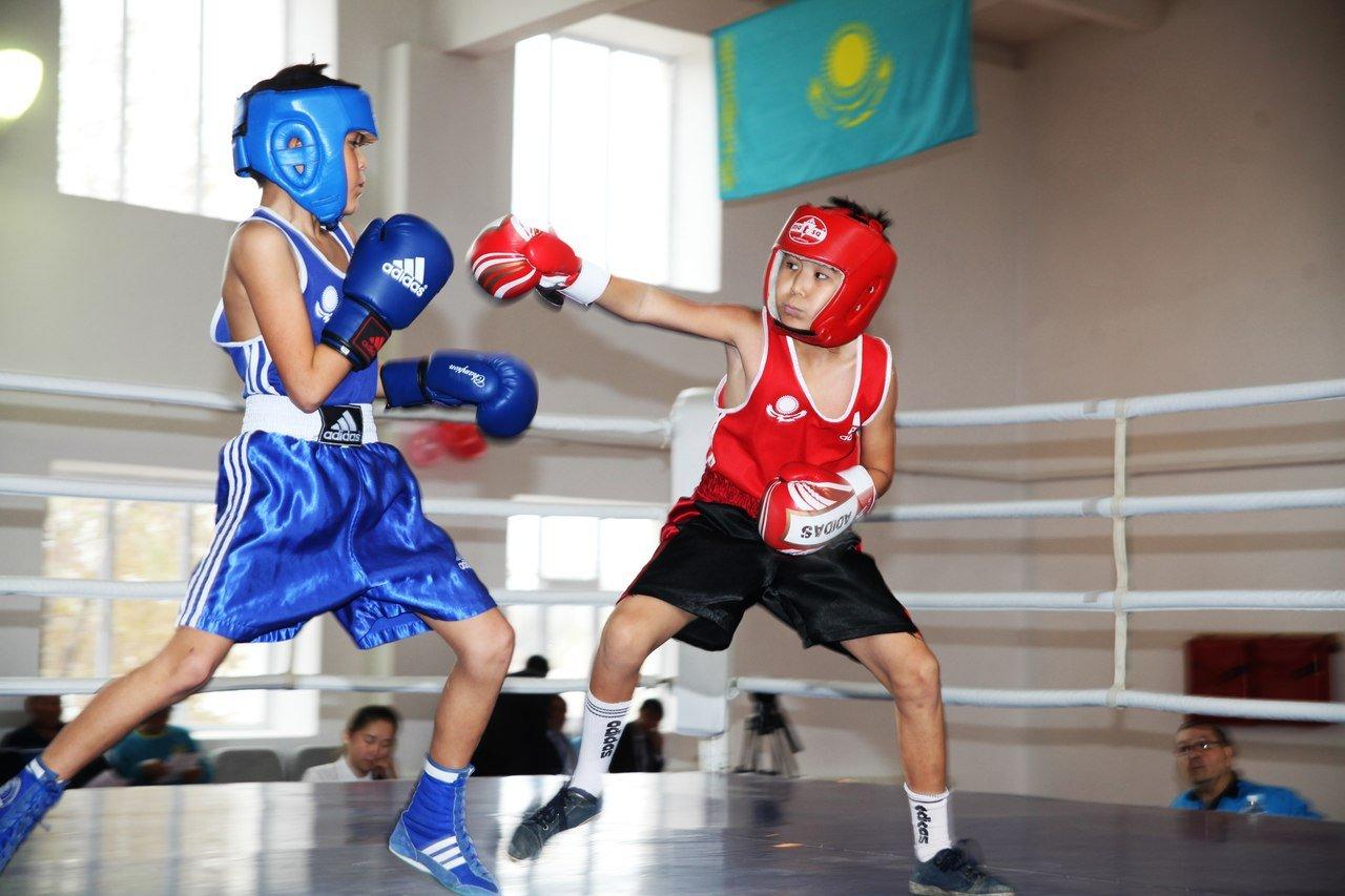 Түркістан облысында бокстан Республикалық турнир өтеді