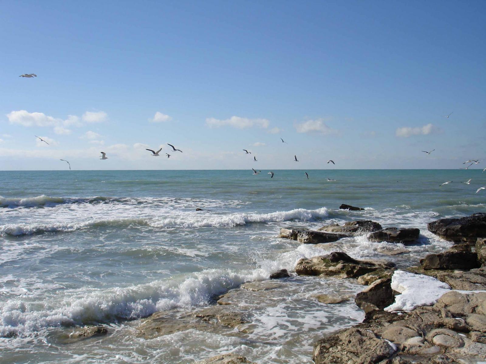 Ертеңнен бастап Каспий теңізінде суда жүзу маусымы басталады