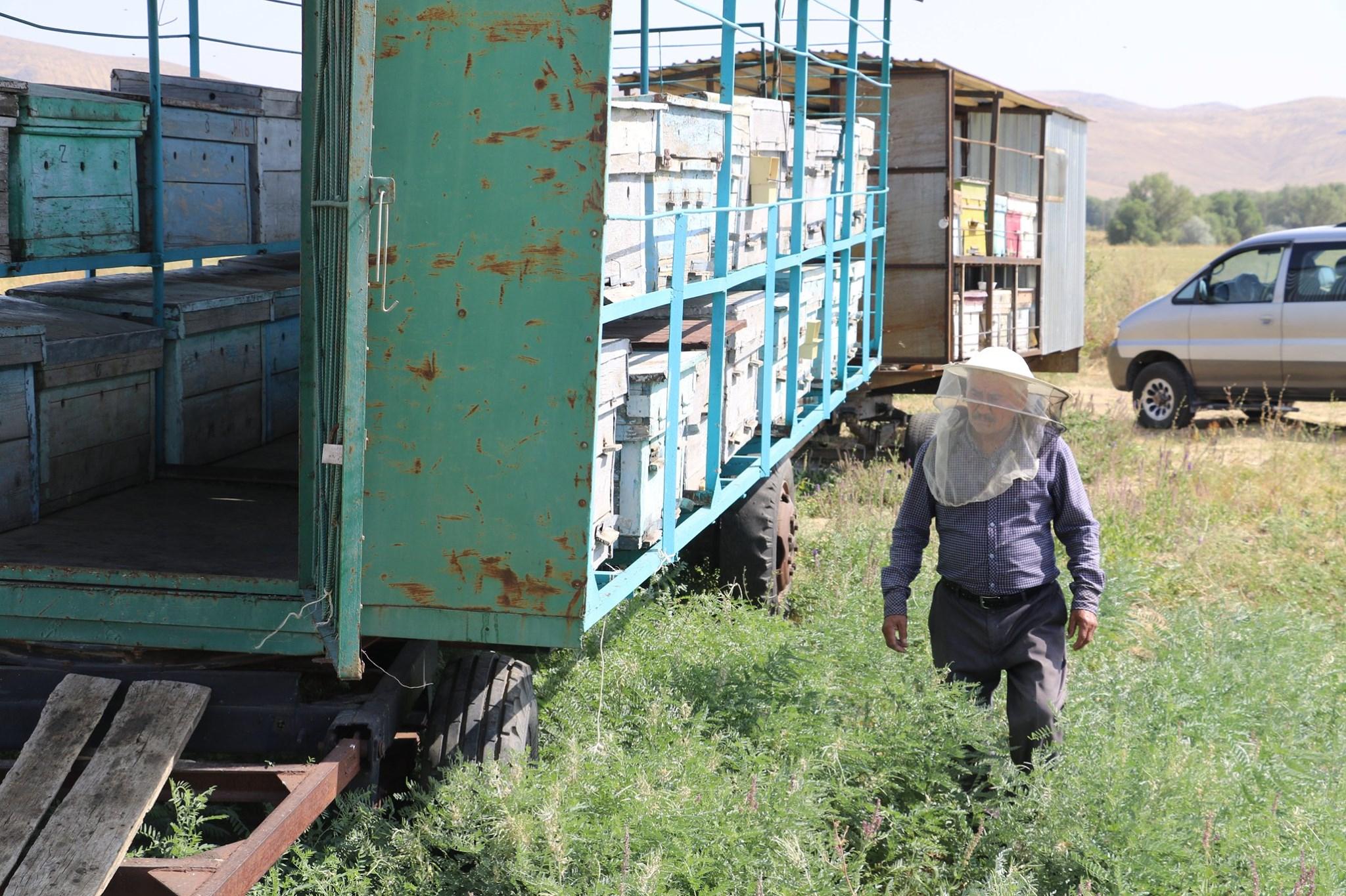 ТҮРКІСТАН: Түлкібастық омарташы жылына 800 келіге жуық бал жинайды