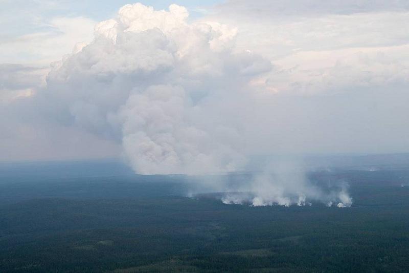 Ресей Қорғаныс министрлігінің әуе күштері 700 мың гектар жердегі өртті сөндірді
