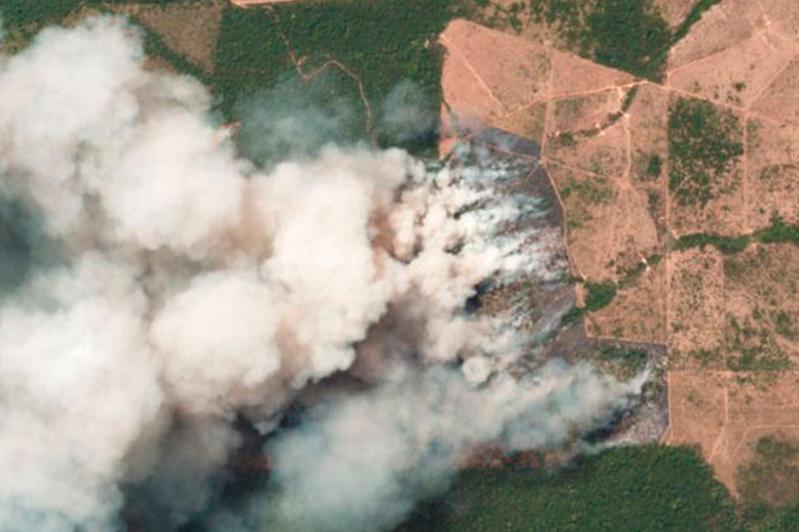 Амазонияның тропикалық ормандарында мыңдаған өрт ошағы жалындауда