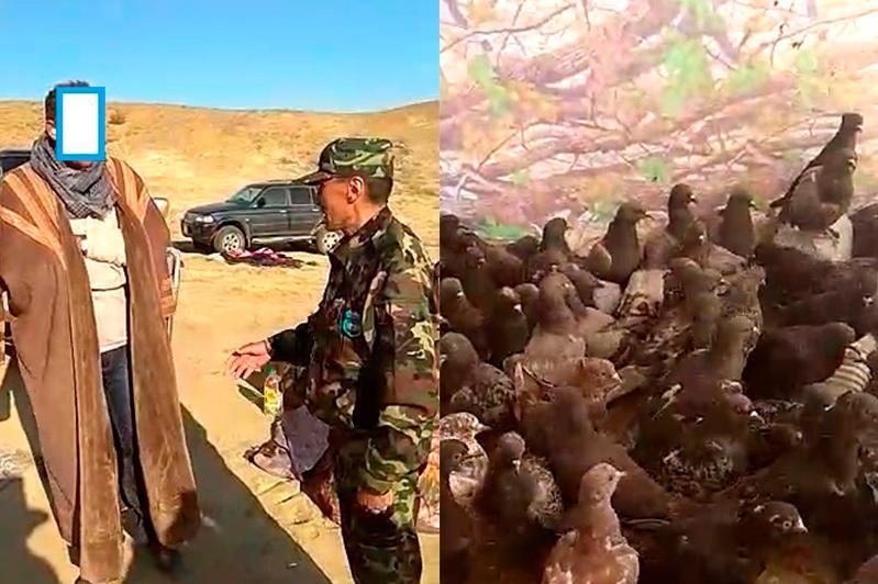 Ақтөбеге ителгі аулауға келген Сирия азаматтары ұсталды