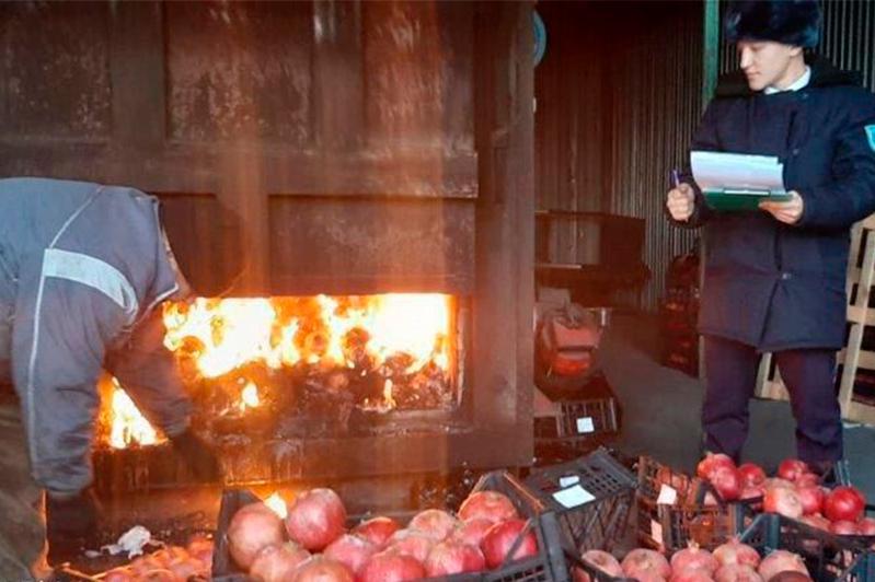 Нұр-Сұлтанда Түркия елінің тонналаған анары өртелді