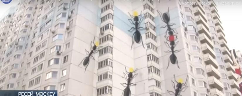 Қазақстандық стрит-арт шебері Мәскеуде зәулім үйдің біріне ерекше сурет салды