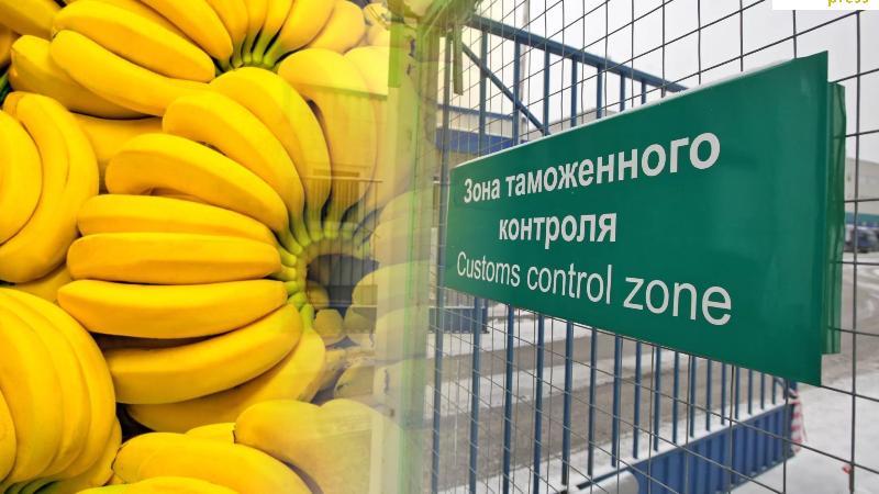 АШМ Ресейден импортталған 19 тонна бананды ел аумағына кіргізбеді