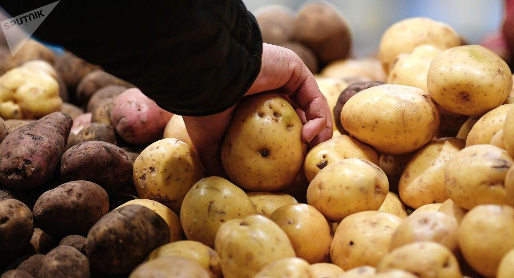Шикі картоппен адам өлтірген павлодарлыққа сот үкімі шықты